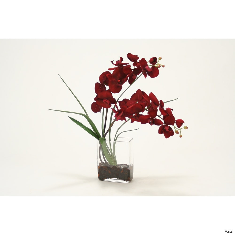 Orchid with Vase Of Tall Red Vase Pics Zoom Vases orchid In A Vase Give This Tall for Regarding Tall Red Vase Pics Zoom Vases orchid In A Vase Give This Tall for Any Occasion I 0d
