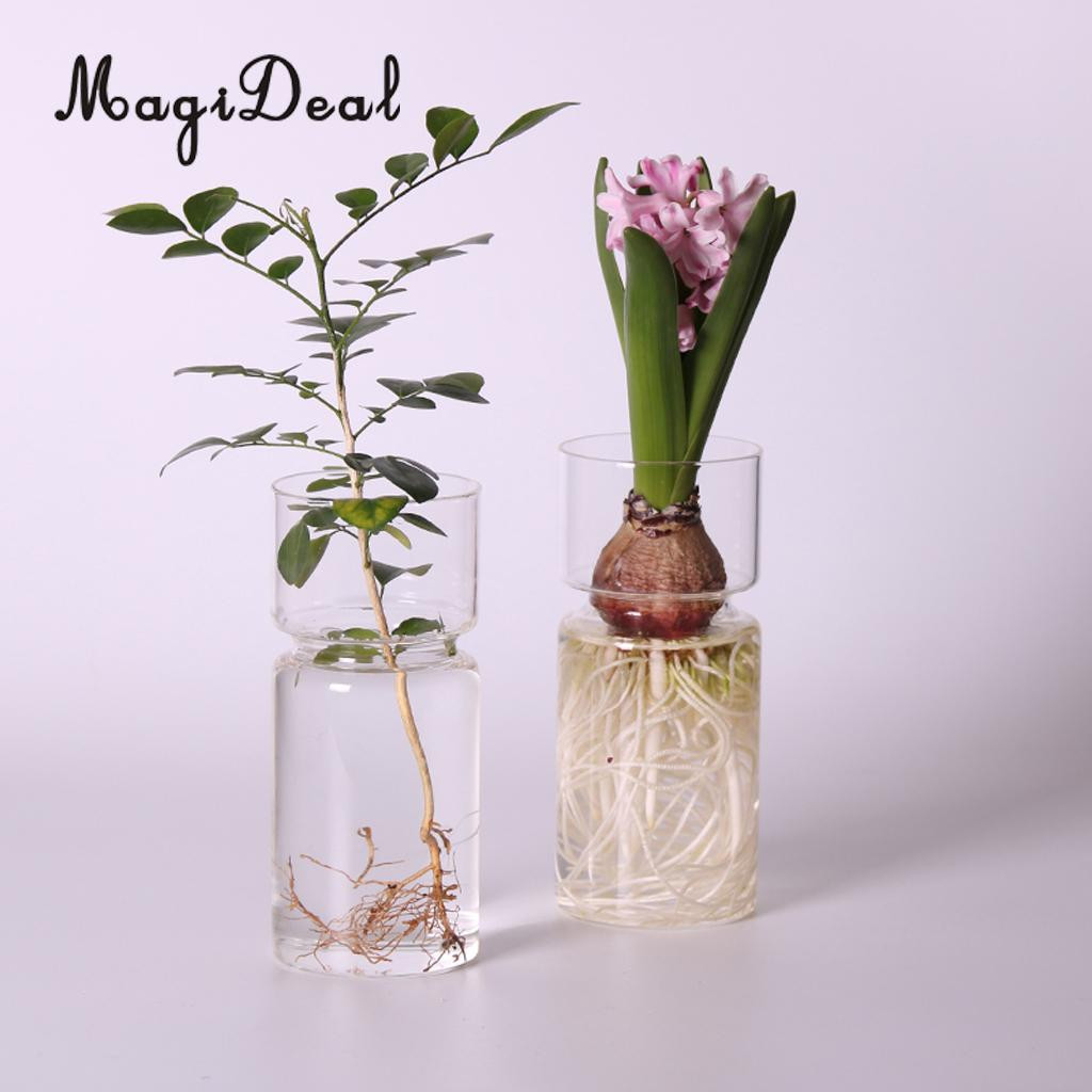 painting glass vases of magideal clear hyacinth glass vase flower planter pot diy terrarium for 1 x glass vase aeproduct getsubject