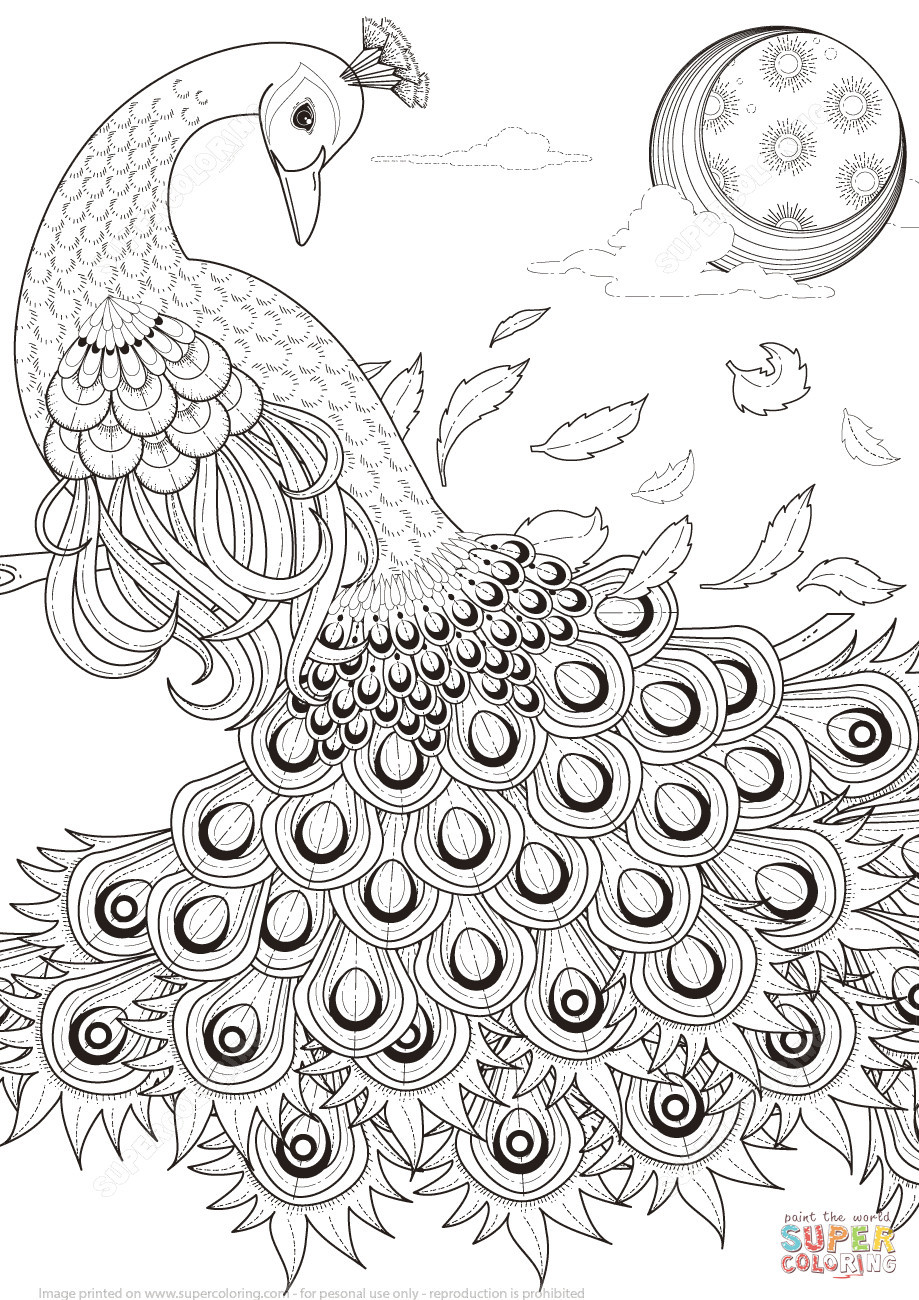 peacock feathers in vase ideas of 20 new adult coloring pages peacock villadellita com regarding adult coloring pages peacock inspirational peacock drawing easy at getdrawings