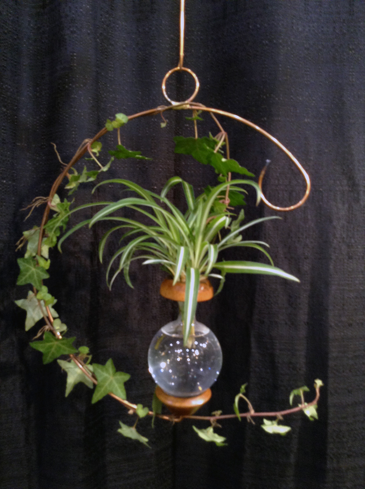 plant rooter vase of roots plant rooters handcrafted plant rooters in c shape plant rooter 26 00