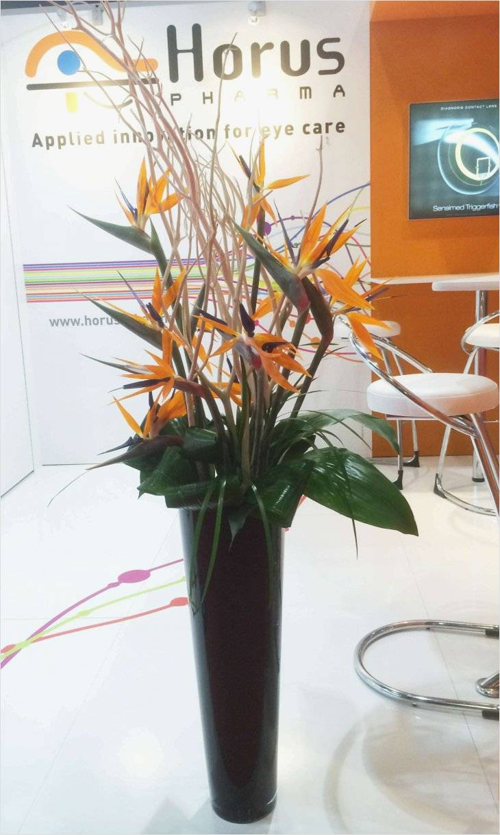 plastic floor vase of famous design on cheap plastic vases for centerpieces for use best with regard to 2 od orange bird paradise twig foliage in black vase concept silk flower arrangements for