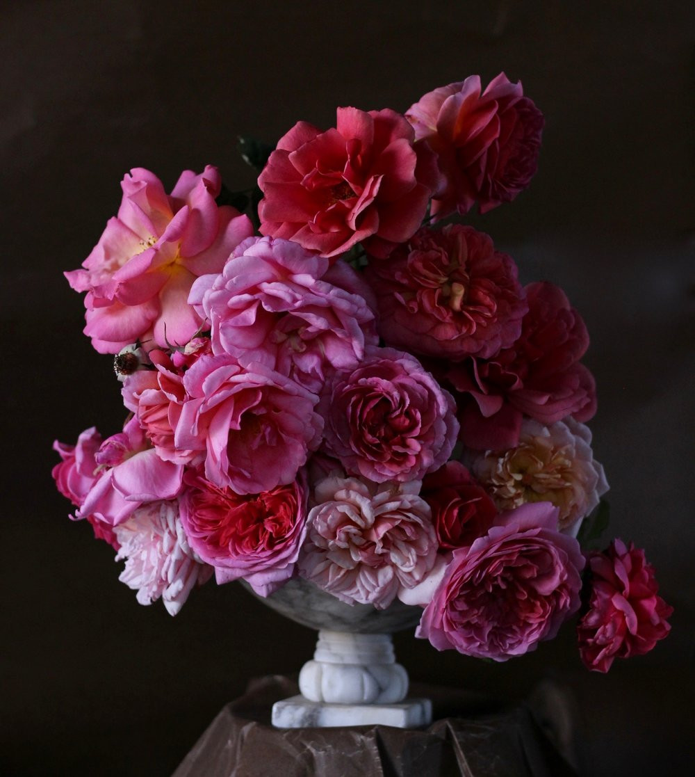 pottery barn marlowe vase of the cultivated journal by christin geall cultivated for a selection of deep and light pinks from rose story farm including clockwise
