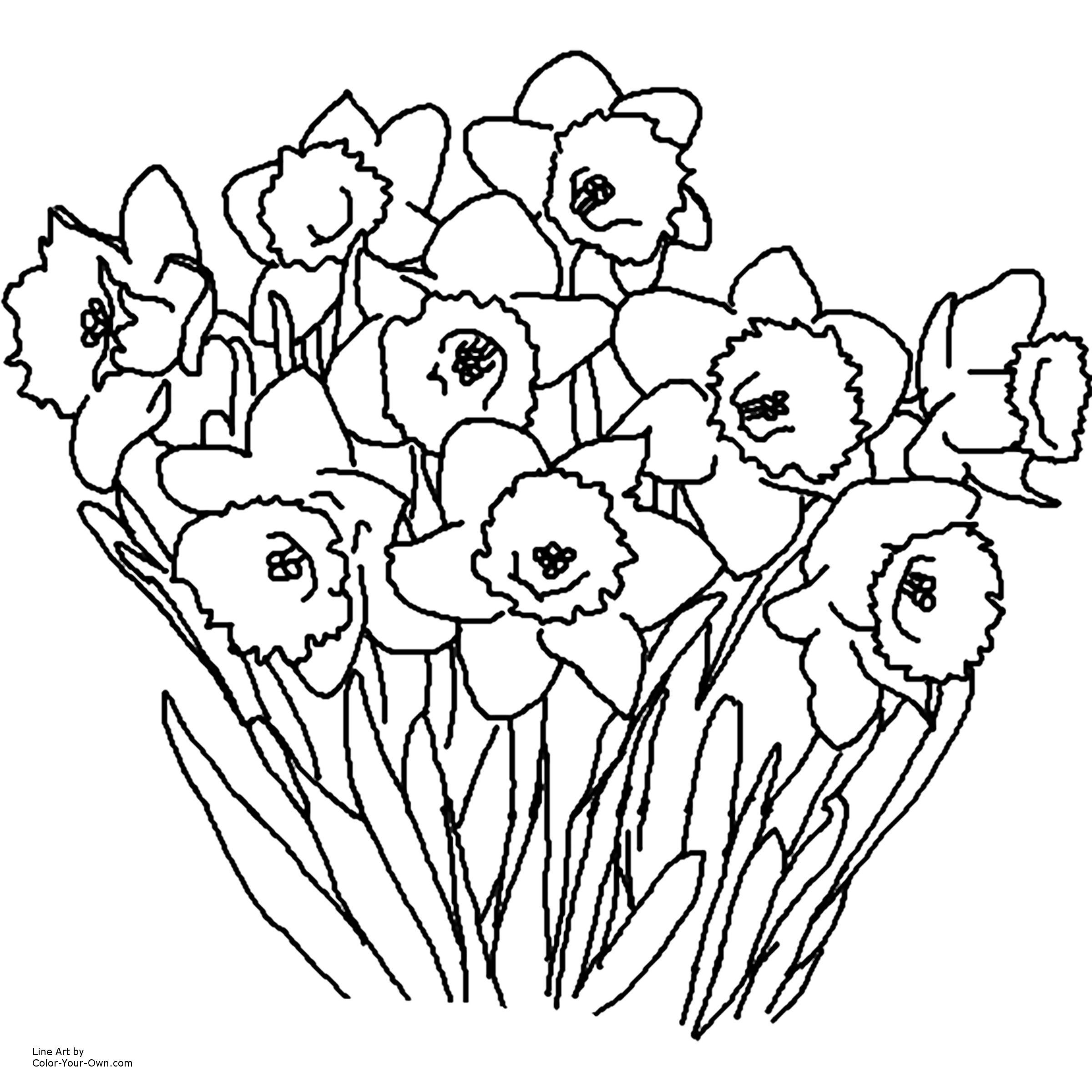 Proflowers Free Vase Of Free Printable Flower Coloring Pages Fresh Rose Coloring Pages for with Free Printable Flower Coloring Pages Luxury Flower Coloring Pages Printable with Wallpapers Hd for android Of