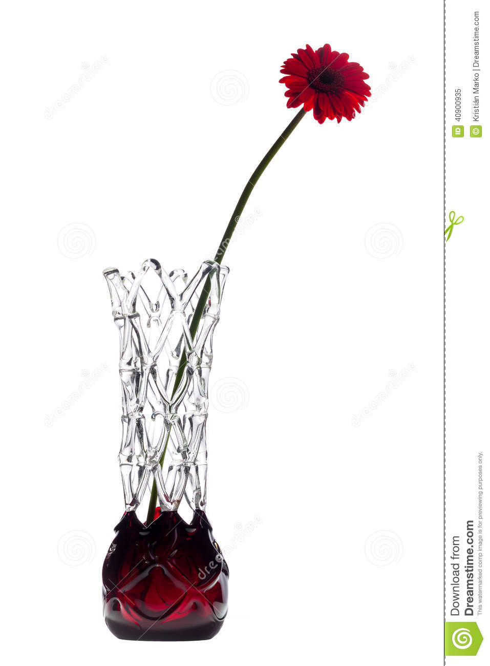 red and white glass vase of abstract vase on white background with one red gerbera flower stock with regard to download abstract vase on white background with one red gerbera flower stock image image of