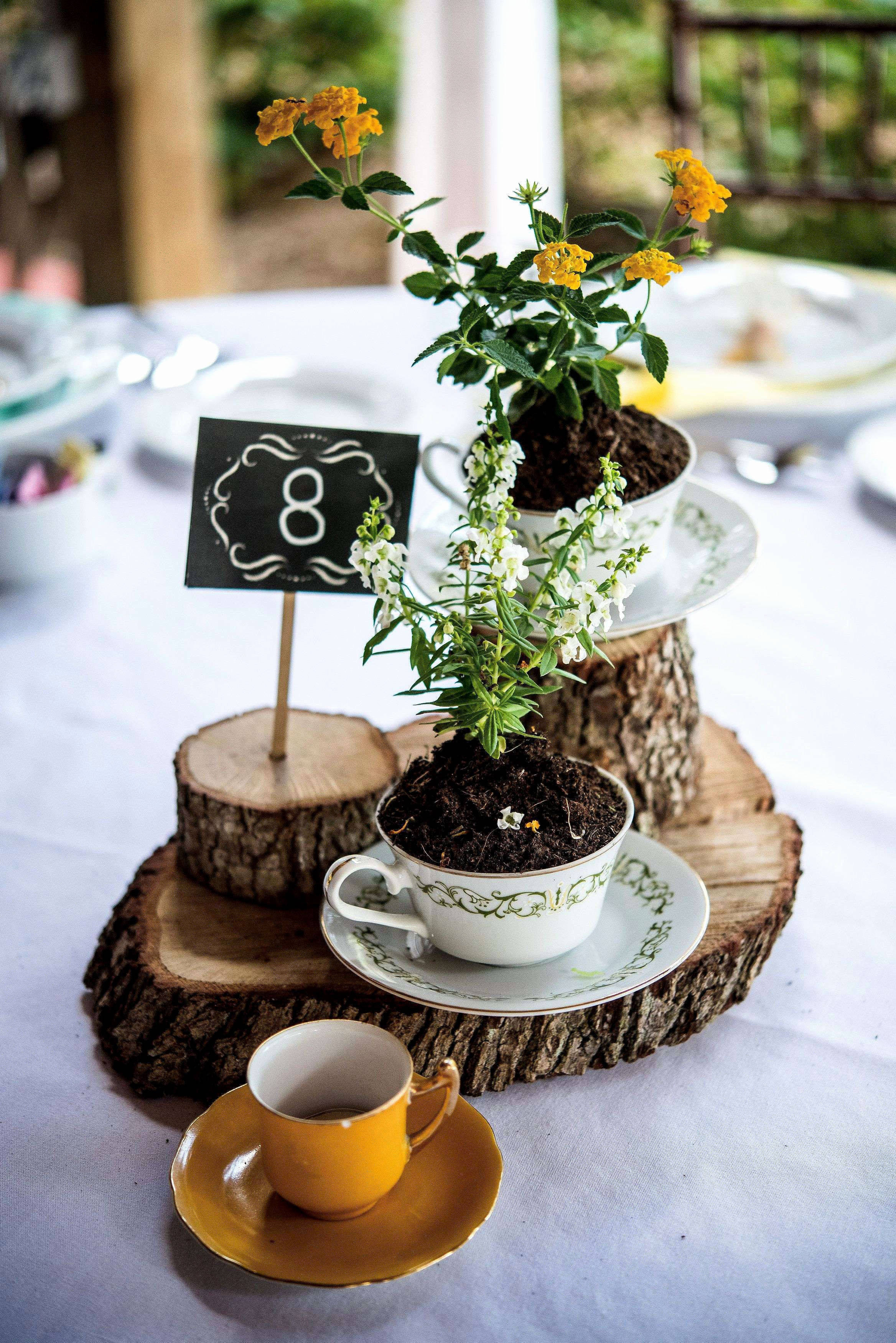 rent vases for wedding centerpiece near me of pictures of impressive tent and chair rental near me fresh wedding with regard to pictures of impressive tent and chair rental near me fresh wedding rental decor handy fashions