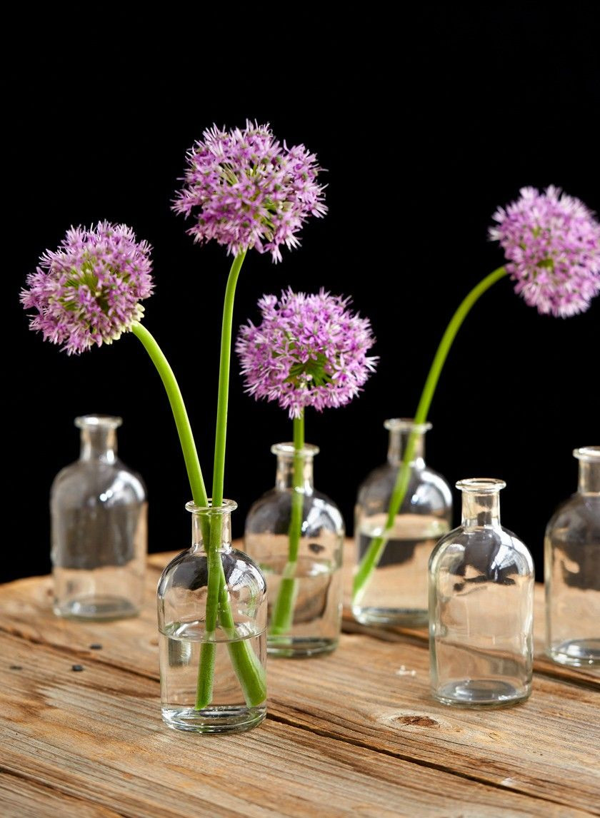 rustic wood flower vases of clear medicine bottle bud vase set of 6 collectibles pinterest in medicine bottle bud vase vintage look glass vases wedding event party supplies nyc eventprofs table centerpiece interior design photo props decorating