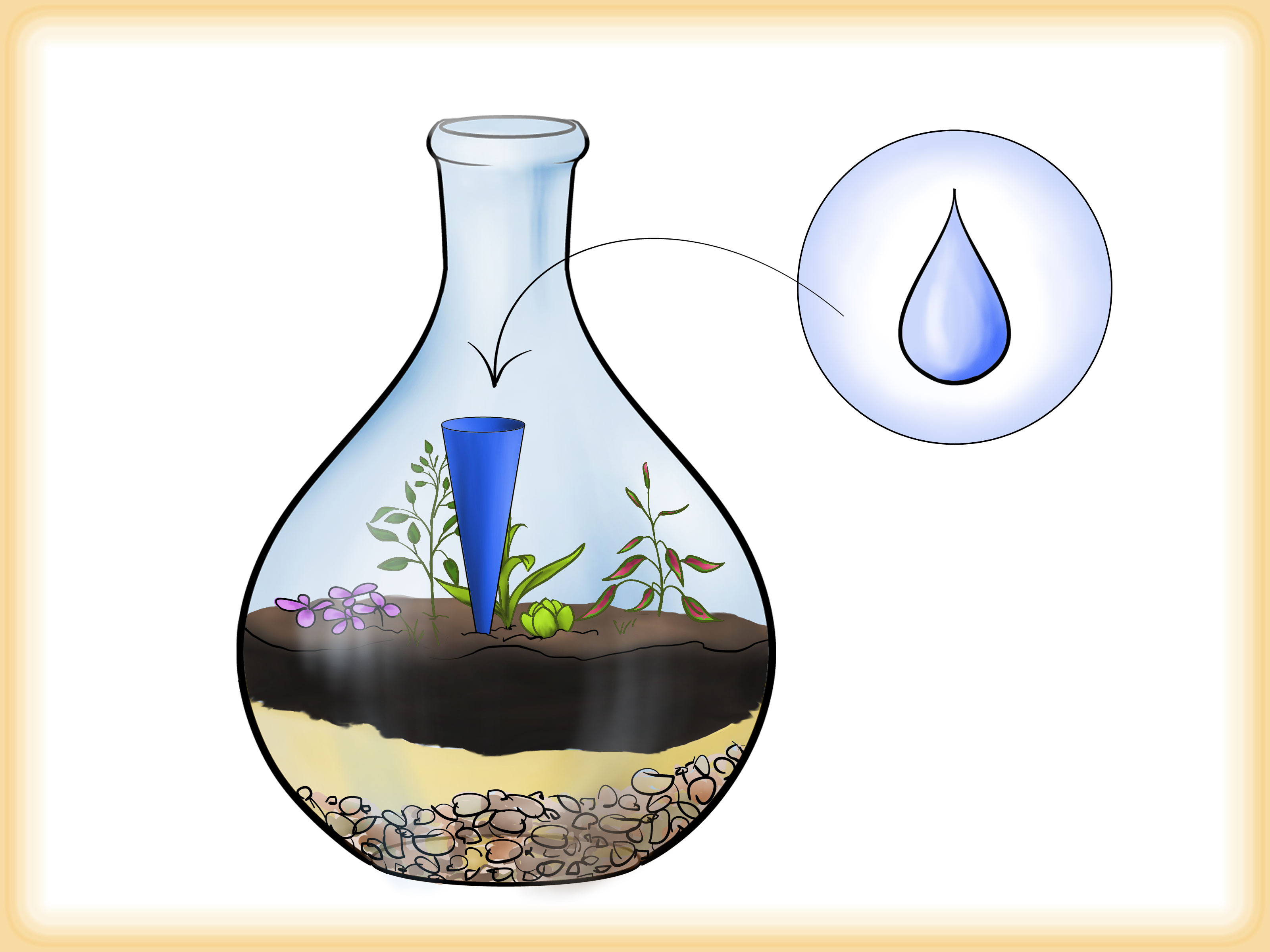 sand art vase of how to grow a garden in a bottle 6 steps with pictures for grow a garden in a bottle step 6