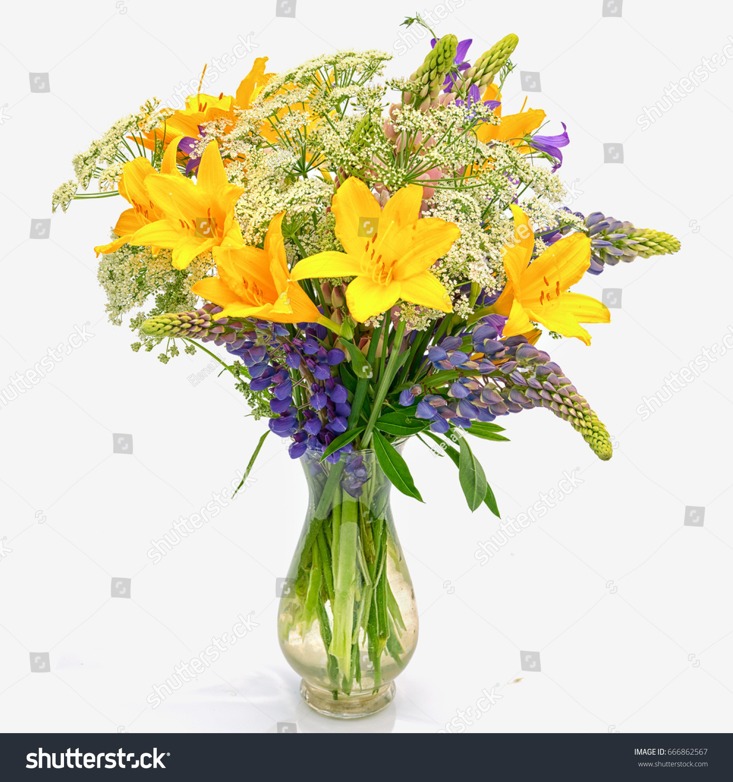 single flower glass vase of bouquet od wild flowers achillea millefolium stock photo edit now for bouquet od wild flowers achillea millefolium day lily and lupine in a transparent glass