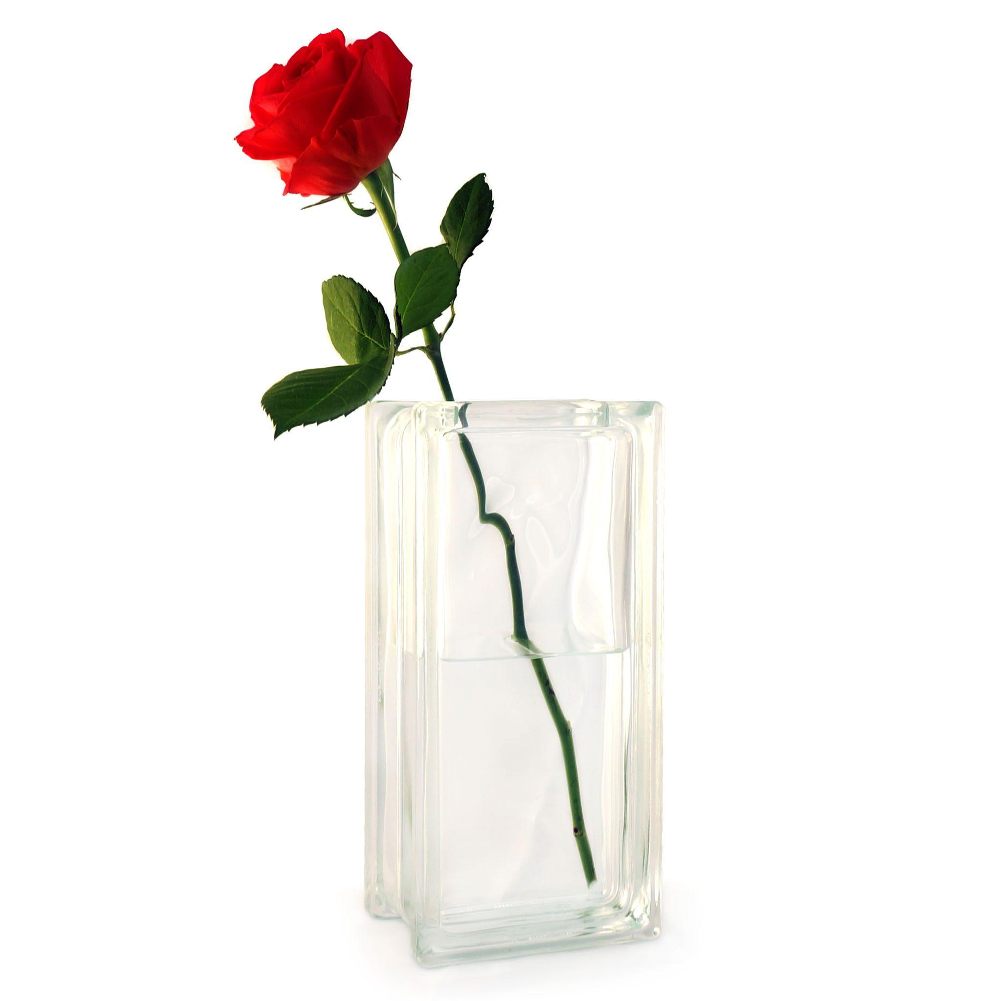 Single Rose Glass Vase Of Rose In A Vase Garden Design Ideas with Single Red Rose In A Gl Block Vase Lovely Gift for