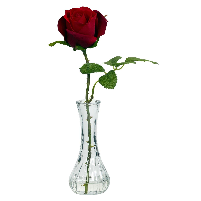 Single Rose Glass Vase Of Single Rose Vases Pics Roses Red In A Vase Singleh Vases Rose Single with Single Rose Vases Photograph Vase Redh Vases Single Rose In Vasei 0d A Red Delivery Scheme