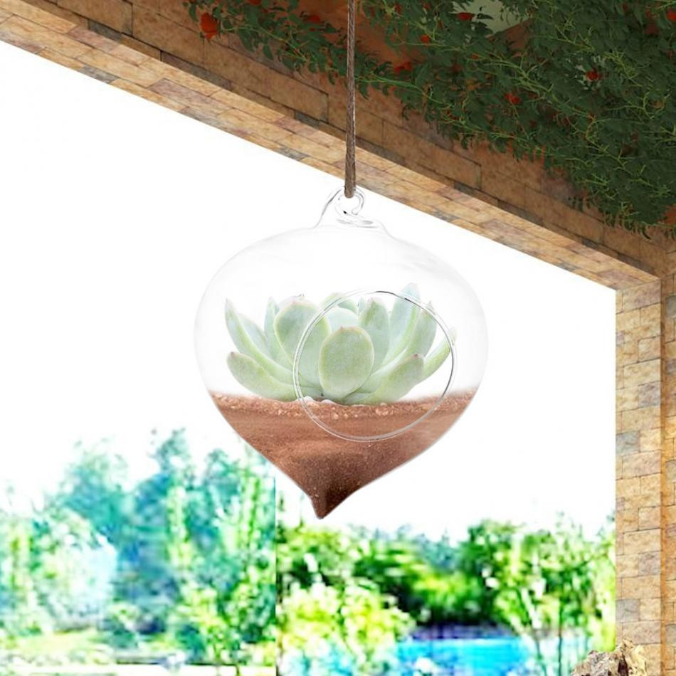 Small Glass Globe Vases Of Transparent Hanging Glass Globes Vase Flowerpot Succulent Plant for Transparent Hanging Glass Globes Vase Flowerpot Succulent Plant Container with 1 Hole Hanging Terrarium Vase Home Garden Decor In Bottles Jars Boxes From
