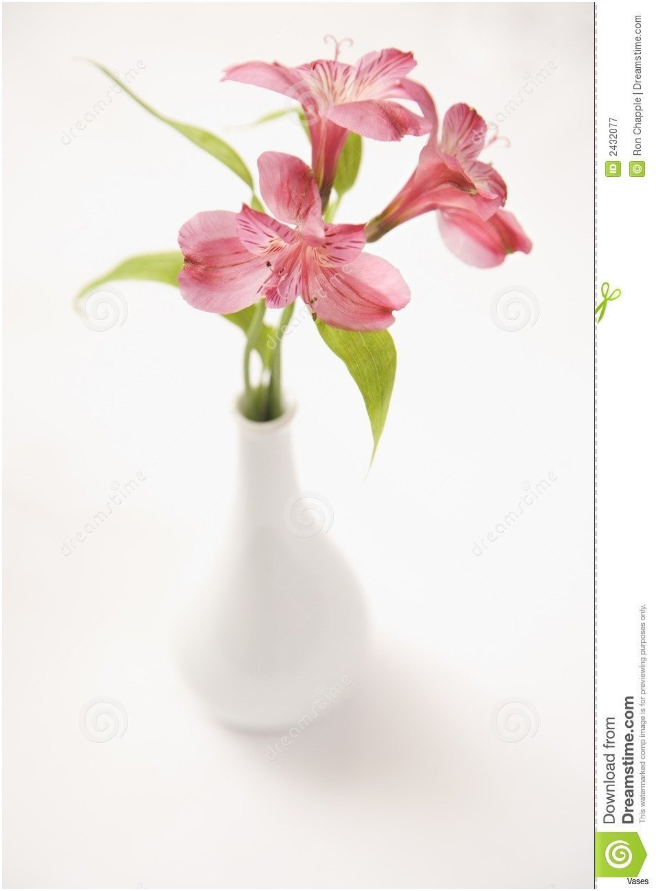 14 Elegant Small Red Vase