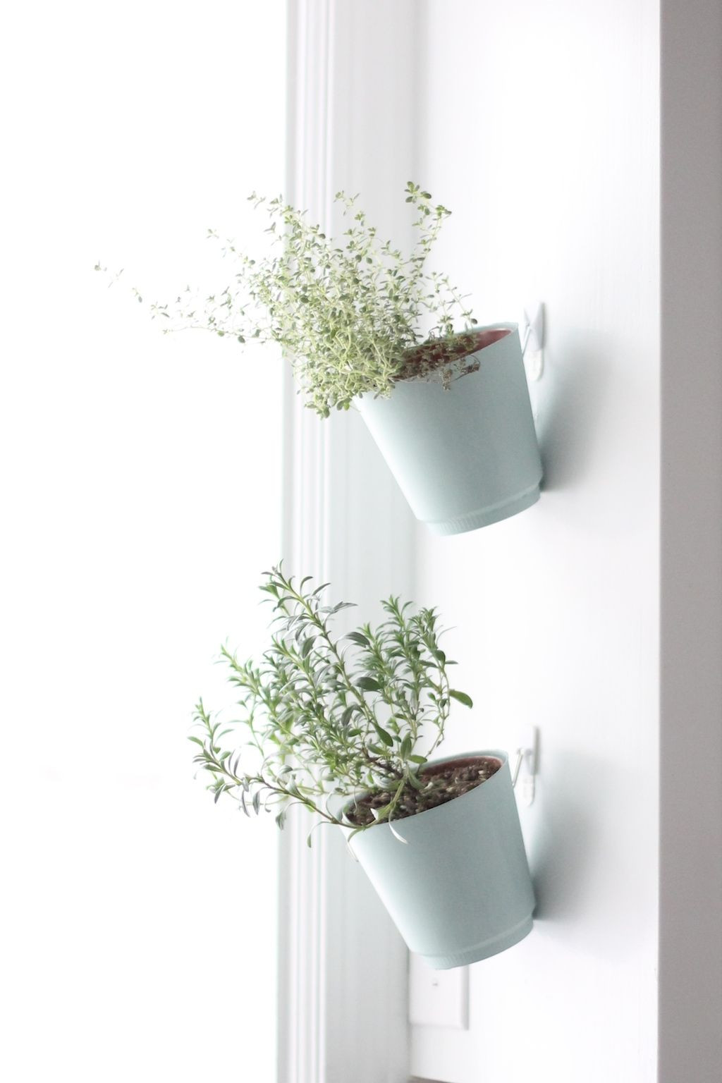 small wall mounted vases of diy hanging herb garden future home hanging mugs on kitchen window in diy hanging herb garden future home hanging mugs on kitchen window sill with spoon markers