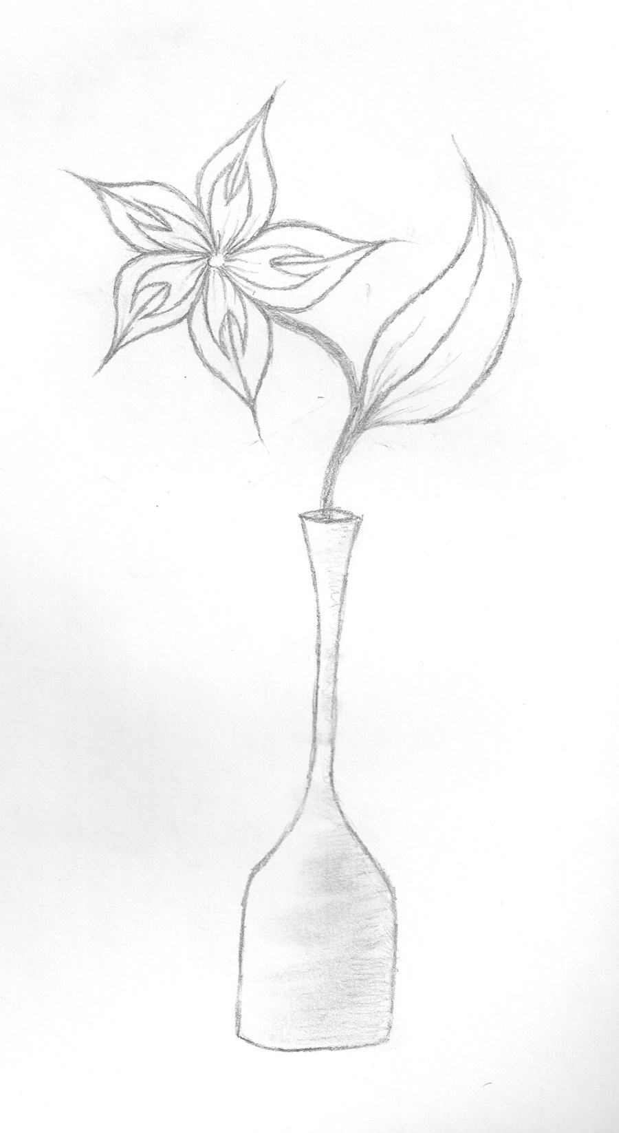 still life vase of flowers of flower vase image drawing flowers healthy throughout flowers in vase drawing at getdrawings free for personal use