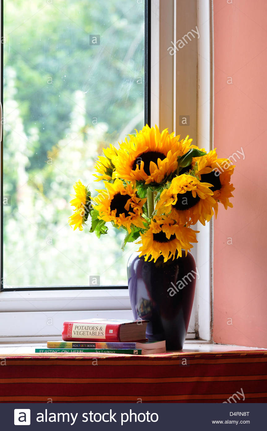 sunflowers in a vase van gogh of sunflowers vase stock photos sunflowers vase stock images page 2 in a vase of sunflowers on a windowsill stock image