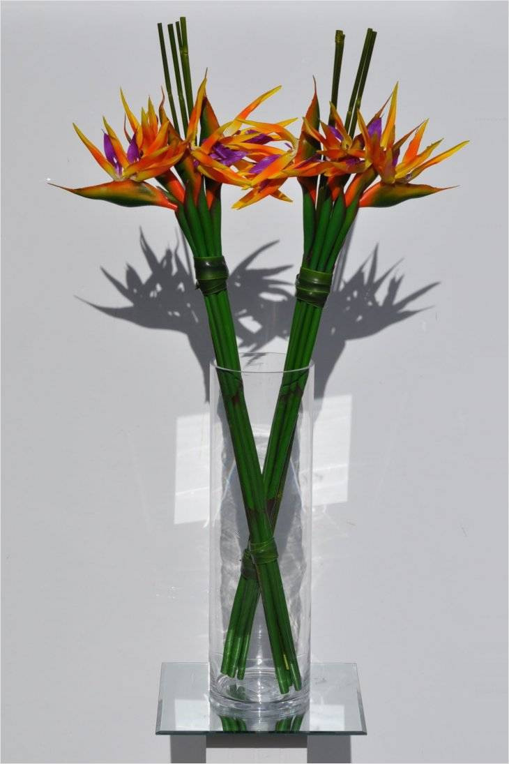 tall elegant flower vases of lovely vase funeral home beginneryogaclassesnear me in flower arrangements elegant floral arrangements 0d design flower inspiration flowers for arrangements 30 awesome