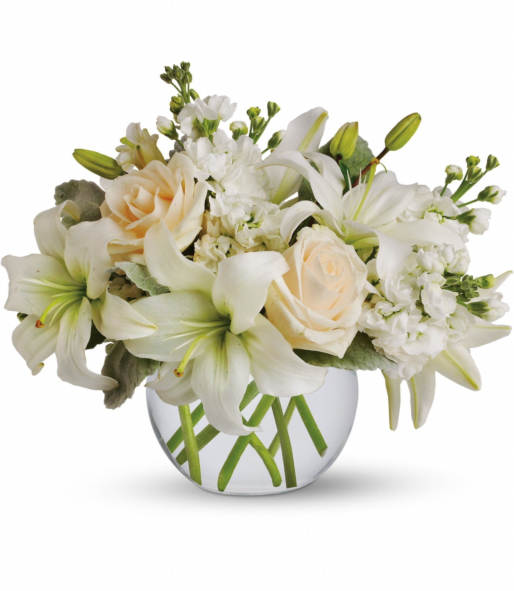 teleflora gift vase of isle of white by teleflora t55 3a in simi valley ca michaels flowers inside isle of white by teleflora t55 3a