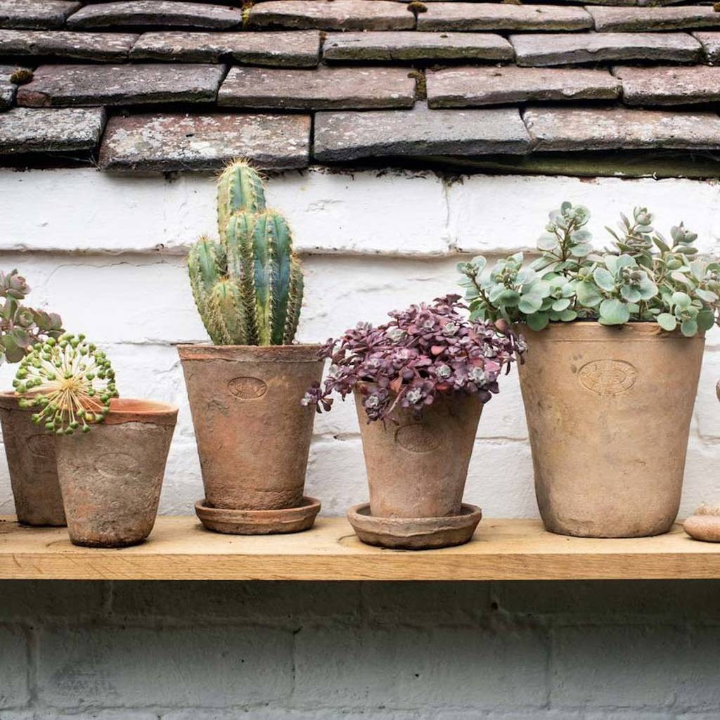 terracotta vase of set of terracotta plant pots by idyll home notonthehighstreet com inside set of terracotta plant pots