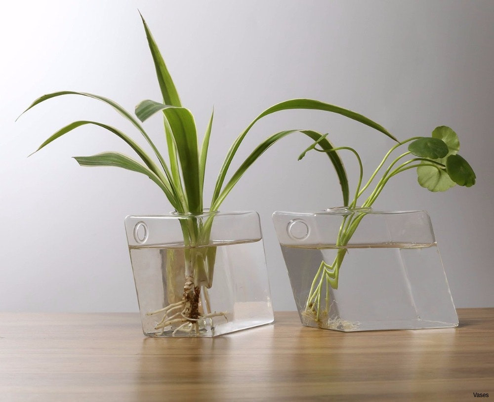 28 Fashionable Test Tube Flower Vase