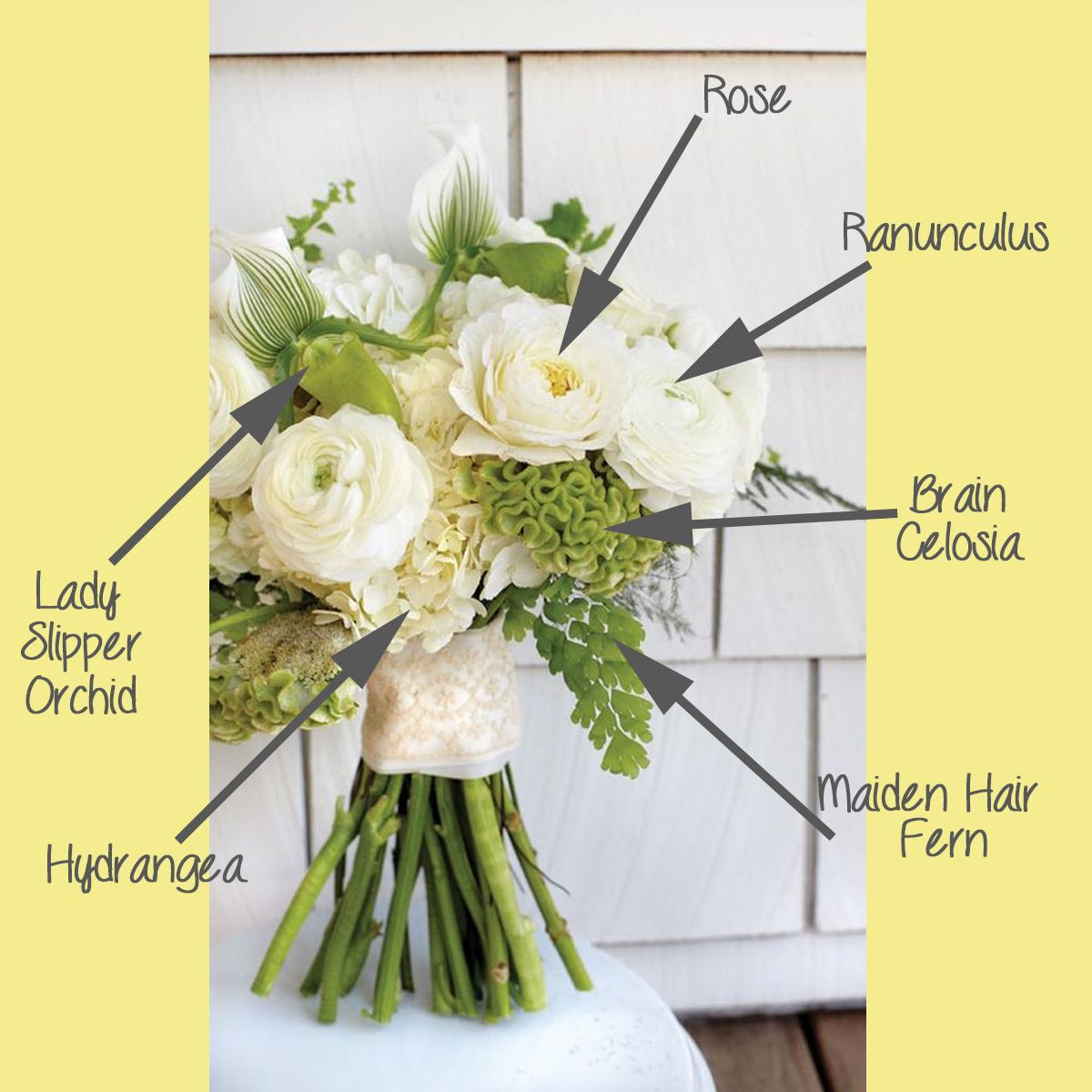 Tiffany Tulip Vase Of White and Green Textural Bouquet Breakdown White Bouquets and with Centerpieces