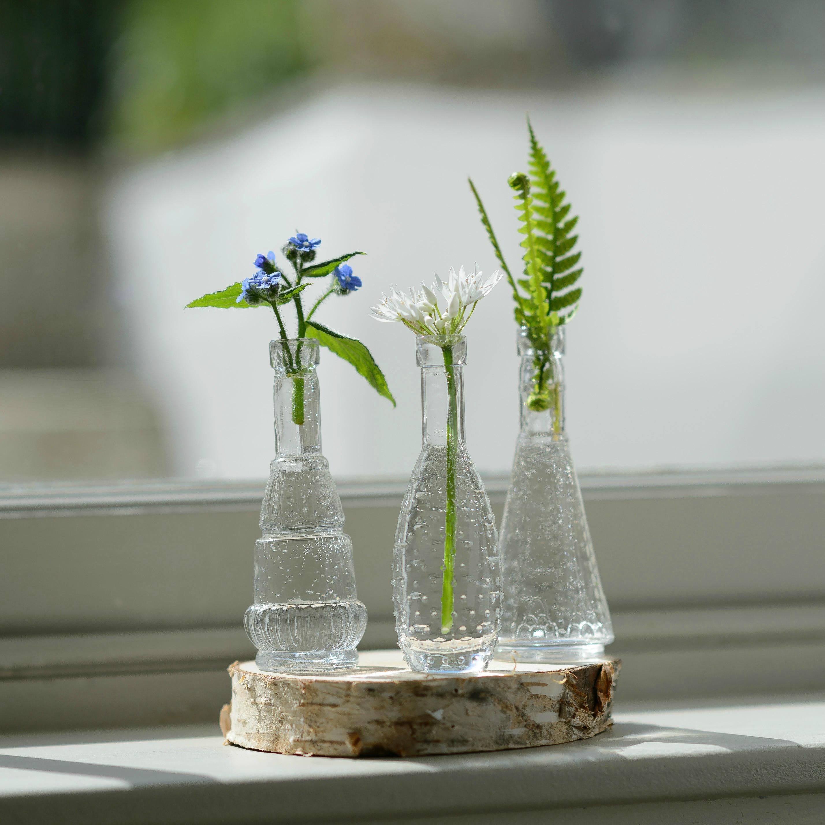 tiny bud vases of tiny bud vase www topsimages com inside bud vase french style mini glass flower vases flower studio shop jpg 2857x2857 tiny bud vase