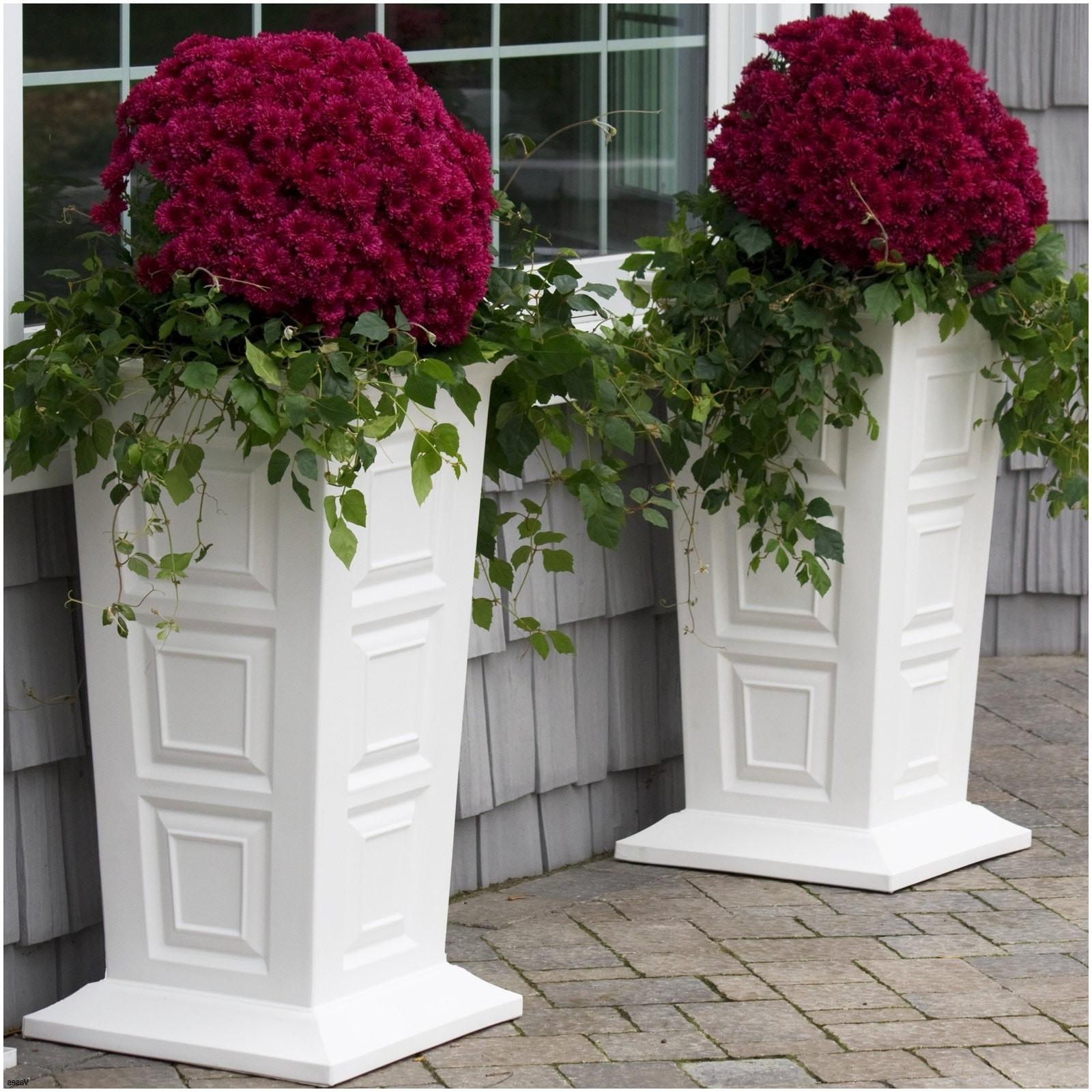 tube flower vase of 17 beau pot decoratif anciendemutu org within extra round outdoor planter pot xl5h vases i 0d cheap design ideas decorative flower pots
