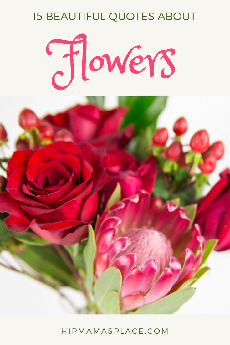 valentine vase fillers of 113 best valentines day images on pinterest valentines day throughout 15 beautiful quotes about flowers