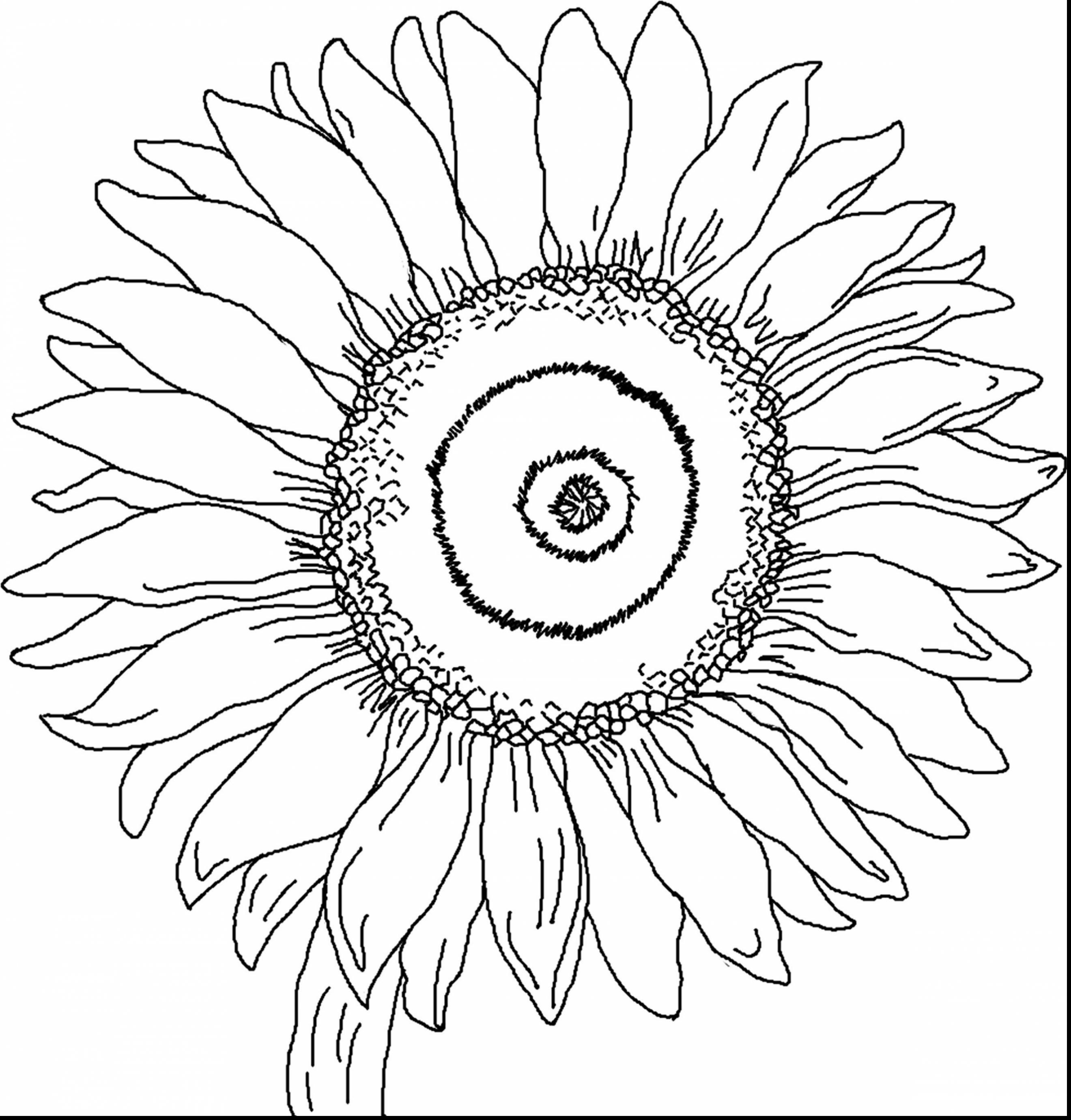 van gogh vase of sunflowers of van gogh sunflowers coloring page 2787748 pertaining to astounding sunflower coloring page with van gogh coloring pages