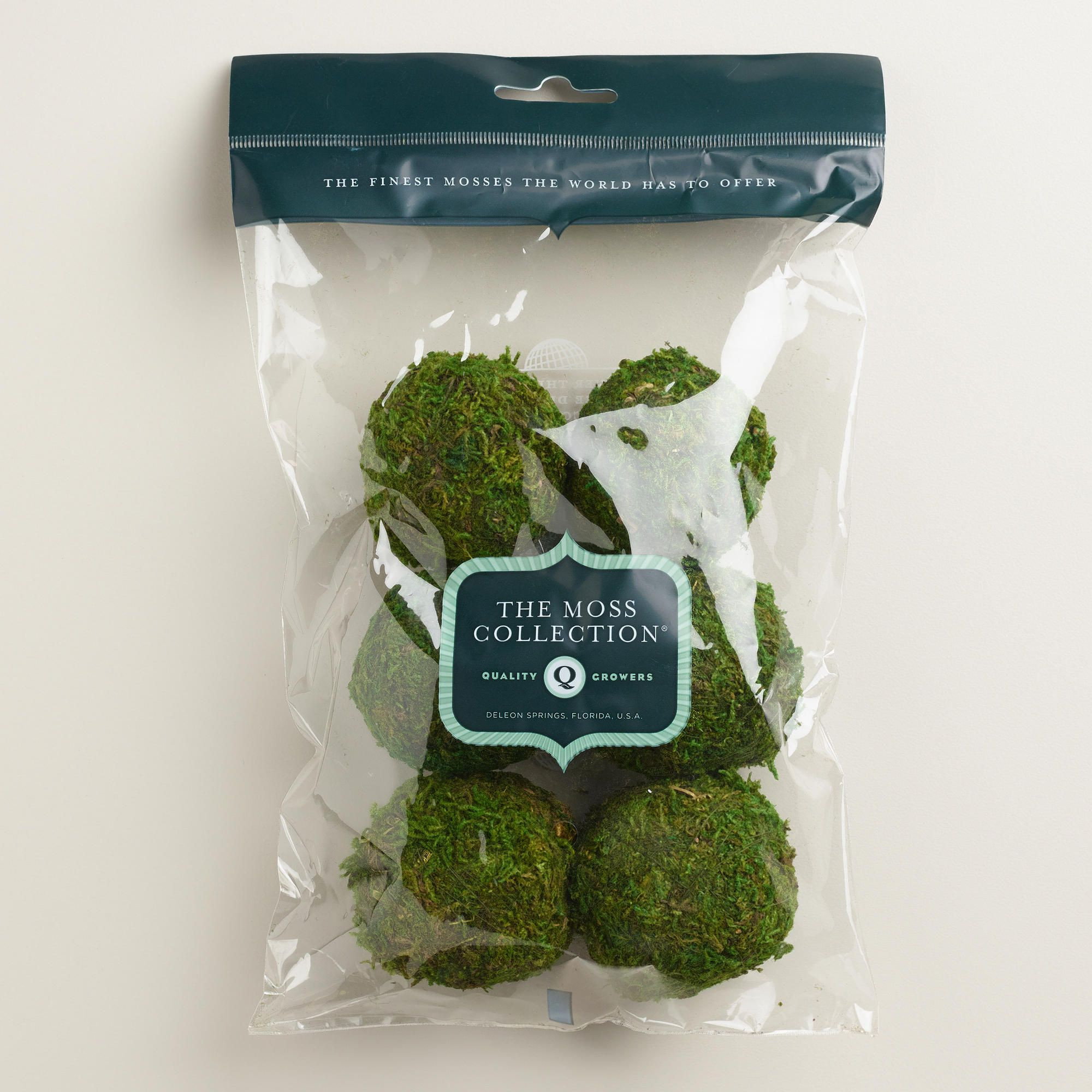 vase filler decorative balls of moss ball vase fillers 6 pack world market 2015 decorating for accent your favorite vases and terrariums with our moss ball vase fillers these plump moss balls add a fresh natural texture to your home decor
