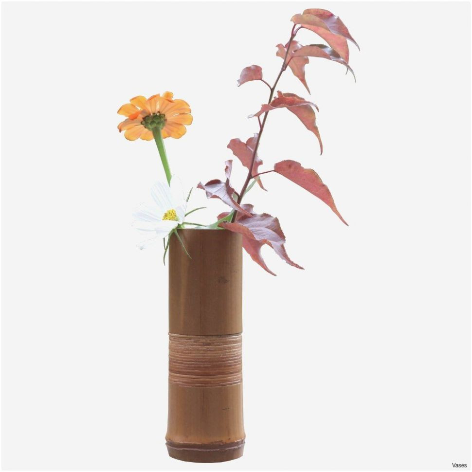 vase for bamboo plant of 10 best of bamboo vase bogekompresorturkiye com for cool gifts stunning handmade wedding gifts admirable h vases bamboo flower vase i 0d 1000
