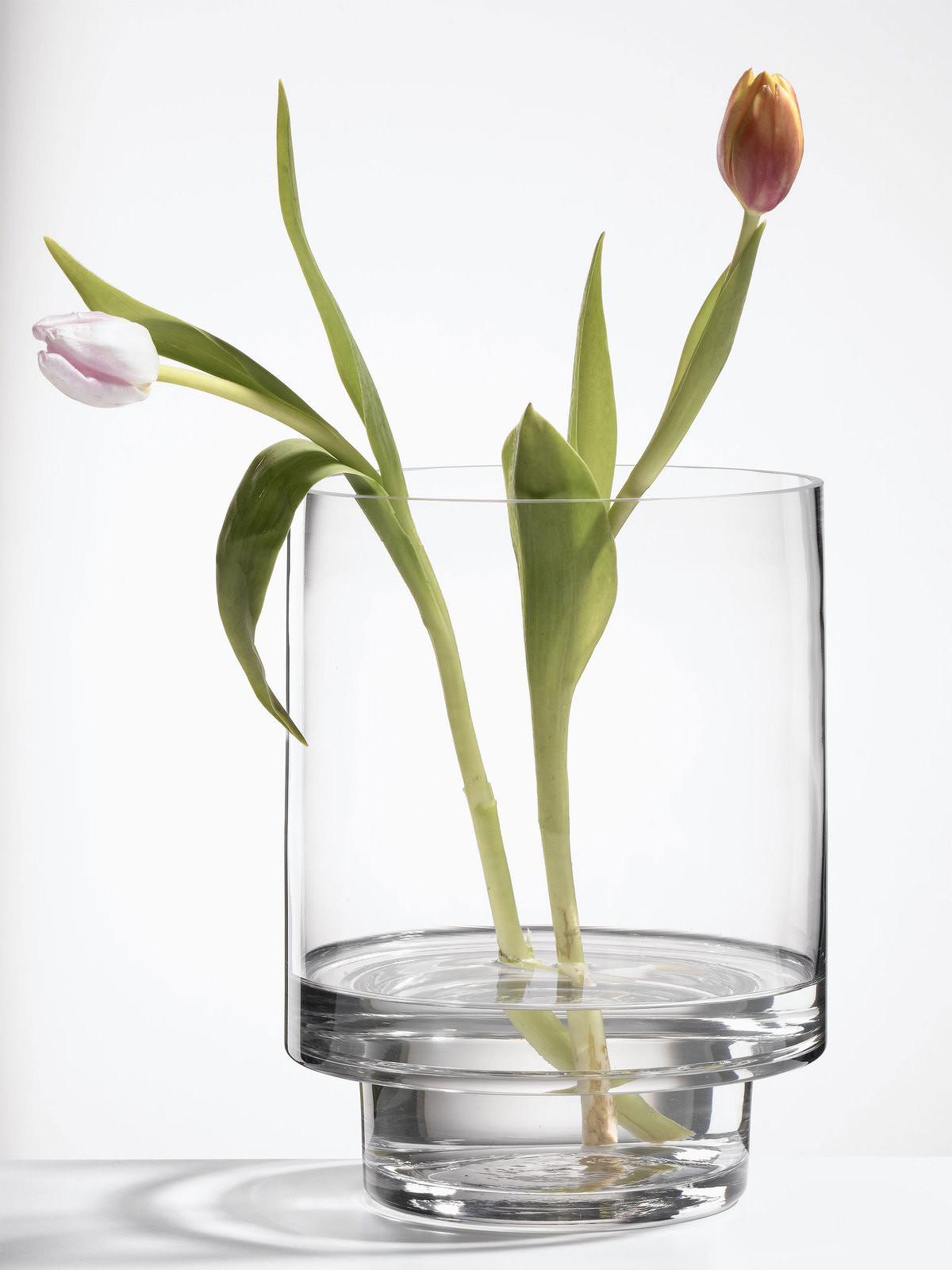 Vase for Long Stem Flowers Of Casa Nova Casa Nova Vase Online Entdecken Schaffrath Ihr Ma¶belhaus Regarding Casa Nova Casa Nova Vase