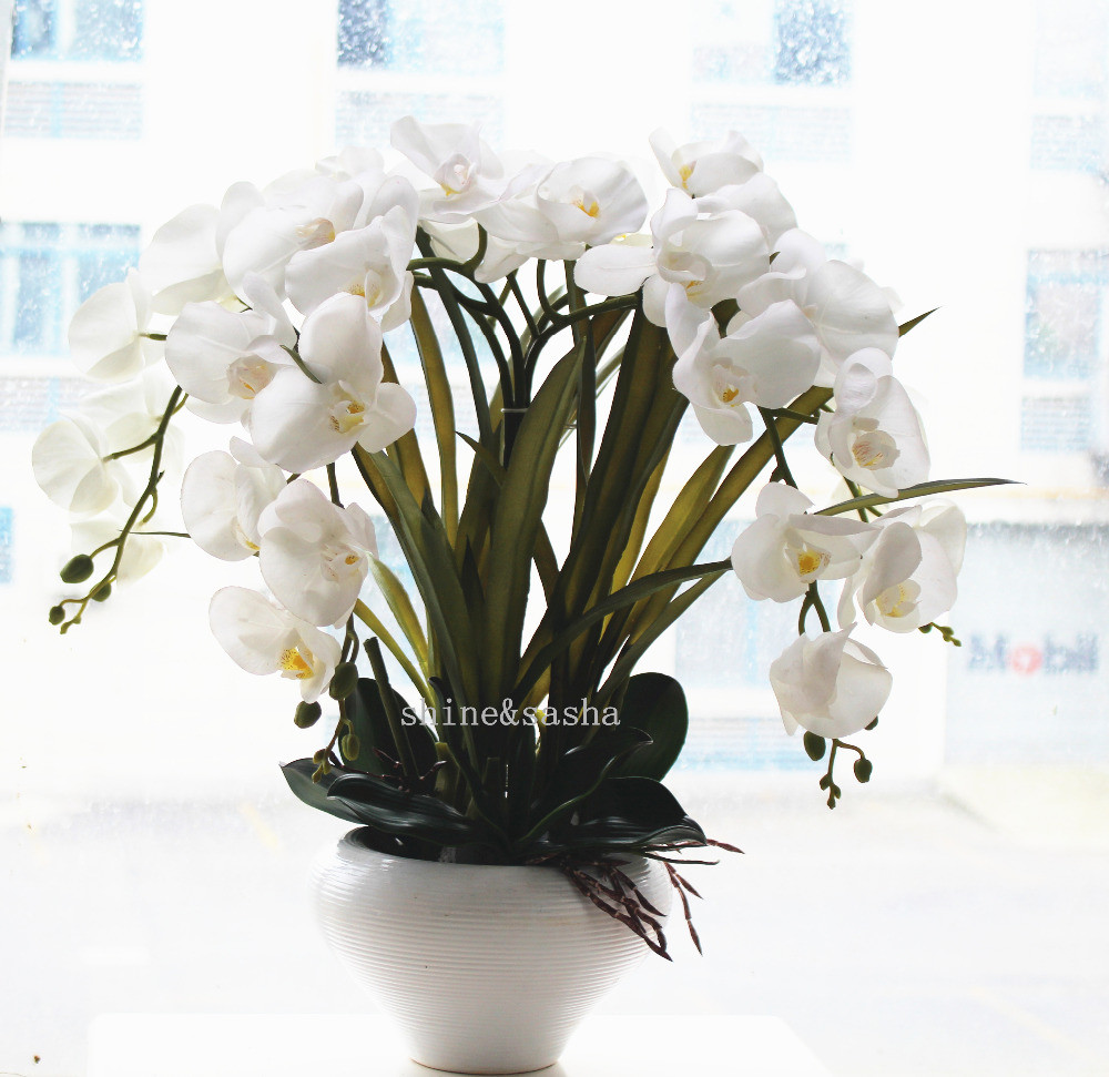 29 Stunning Vase with orchids 2021 free download vase with orchids of silk flowers in silver vase flowers healthy for interior white orchid arrangements with vase for home interior design beautiful artificial silk flowers
