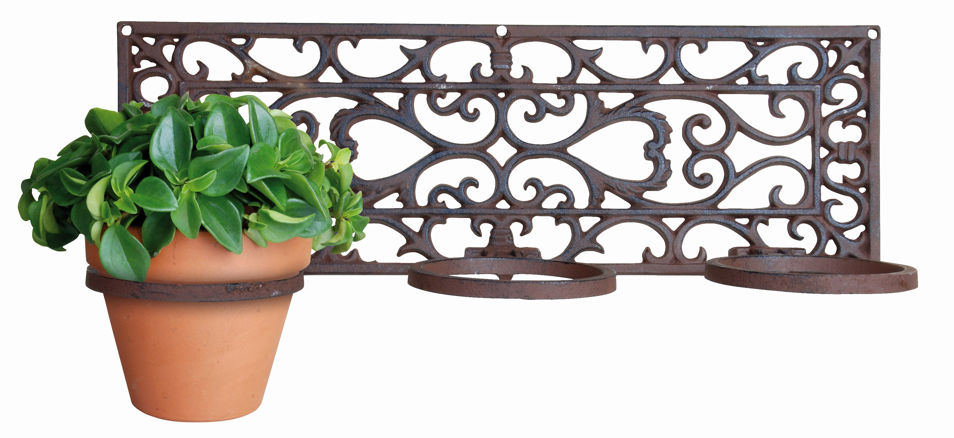 wall flower vase holder of wall hanging flower pot design floating wall vases introh mounted with regard to 0d bronze wall hanging flower pot wall hanging plant pot holders
