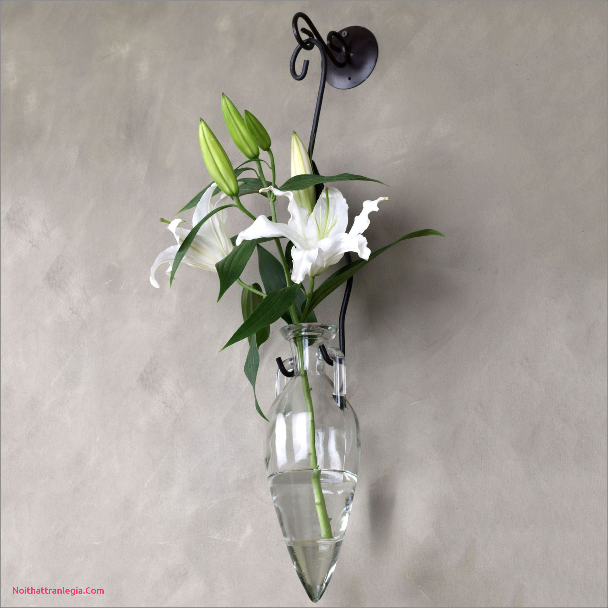 27 Popular Watering Can Flower Vase