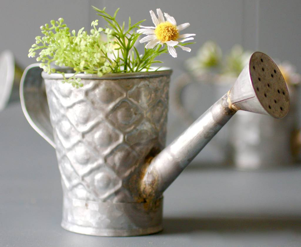 watering can flower vase of zinc watering can planters by london garden trading inside zinc watering can planters