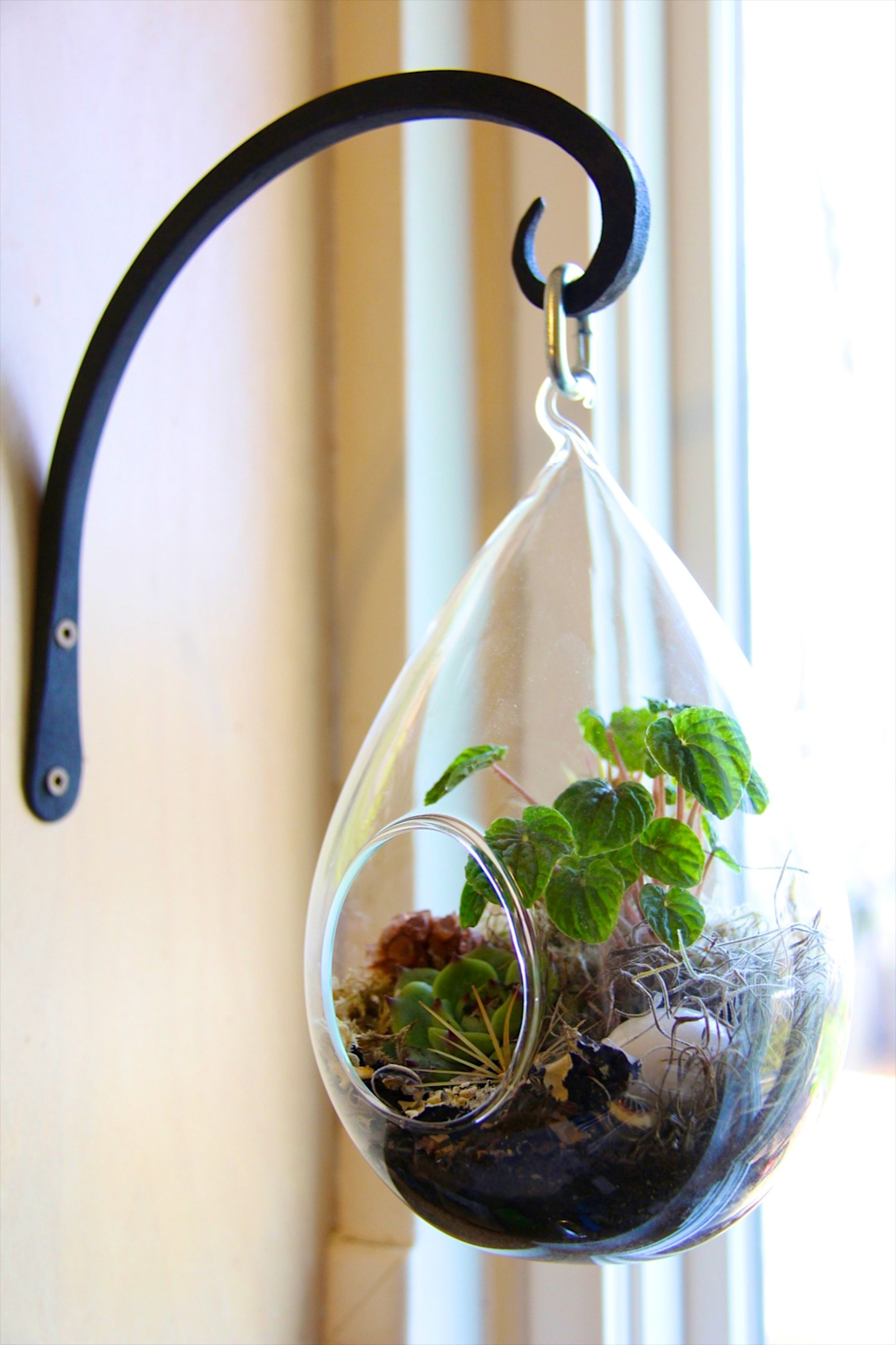 Watering Can Vase Metal Of How to Make A Terrarium 7 Steps with Pictures Inside F3nxqh4ha4mbayk