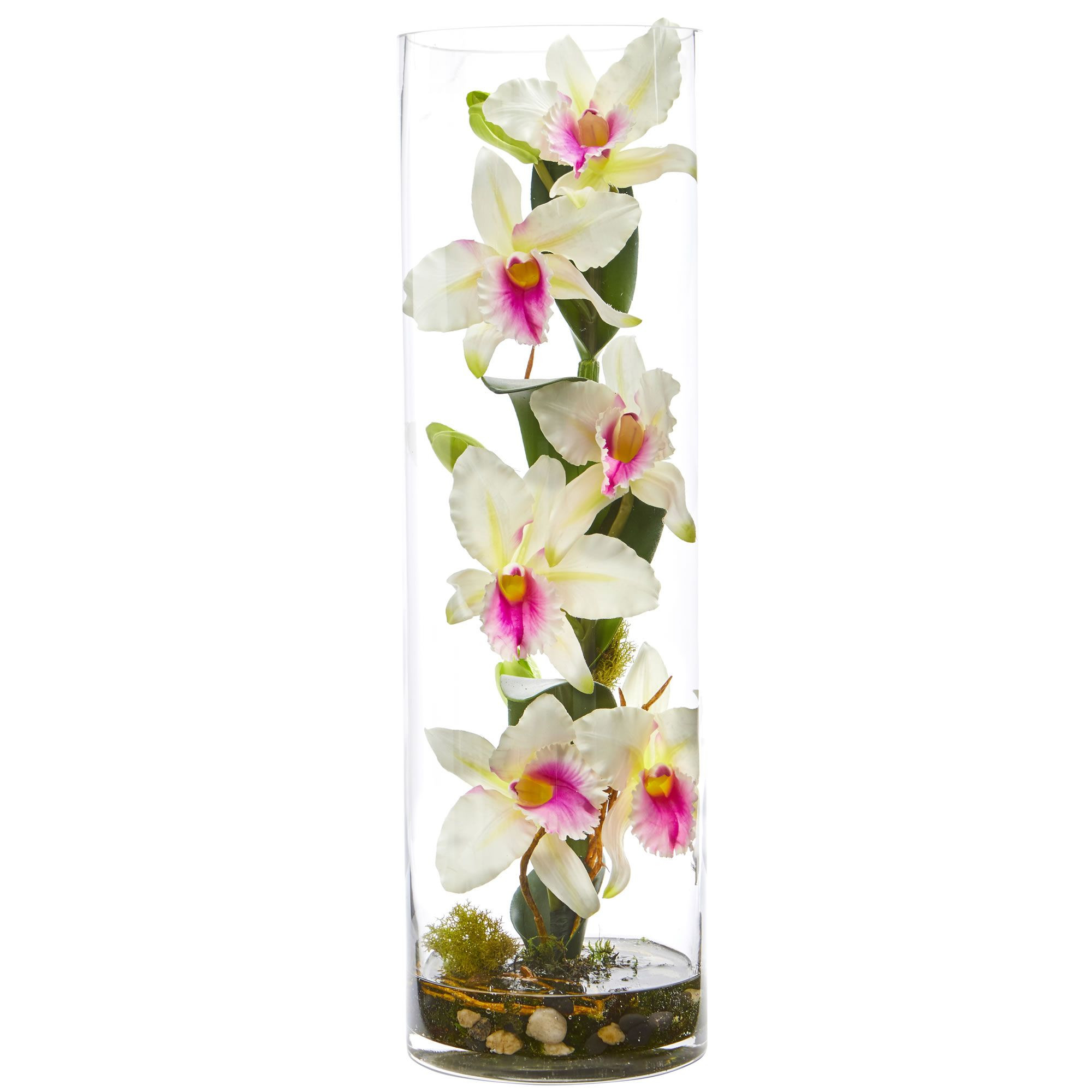 white orchids in glass vase of 20 cattleya orchid artificial floral arrangement in cylinder vase inside delicate realistic artificial orchid flowers bloom from the natural looking stem all enclosed in a glass cylinder with faux water