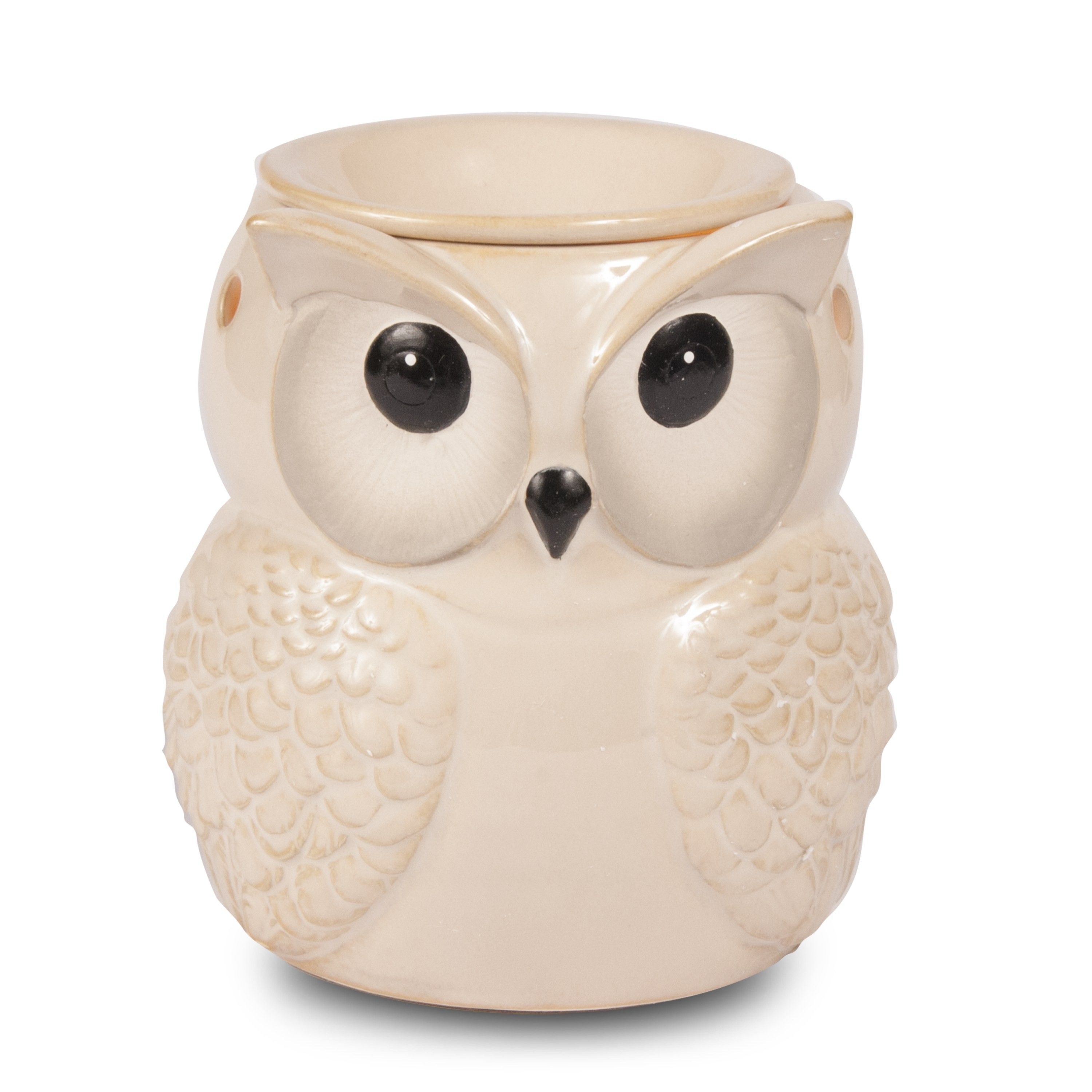 White Owl Vase Of Winter White Owl Product Photography Pinterest Owl and Product with Winter White Owl