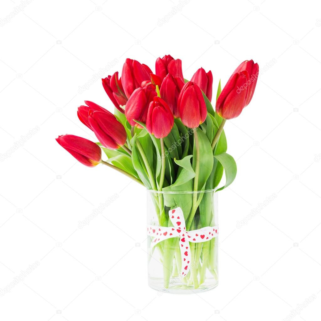 white tulips in glass vase of red tulips bouquet in vase decorated with ribbon isolated over intended for red tulips bouquet in vase decorated with ribbon isolated over white background zdja™cie od laima gri