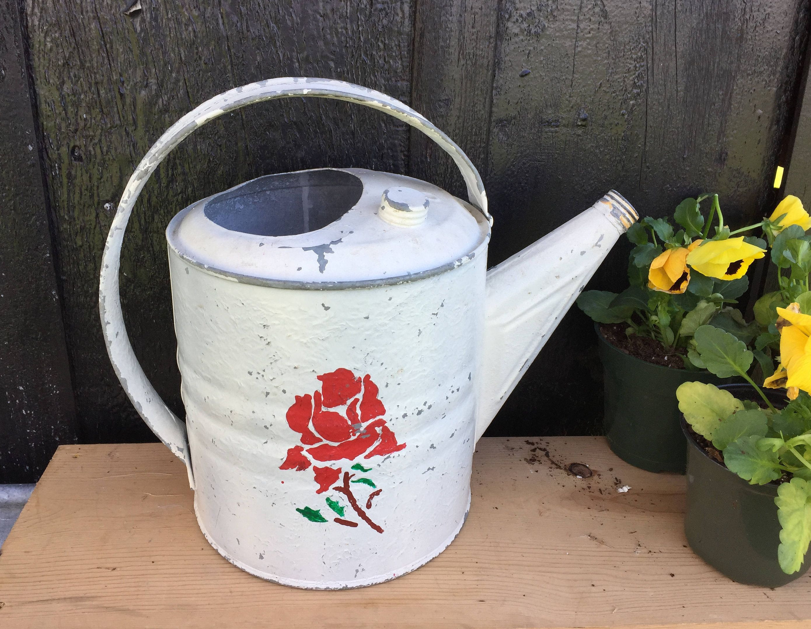 white watering can vase of galvanized watering can painted white with red rose vintage rustic inside galvanized watering can painted white with red rose vintage rustic garden decorating cottage