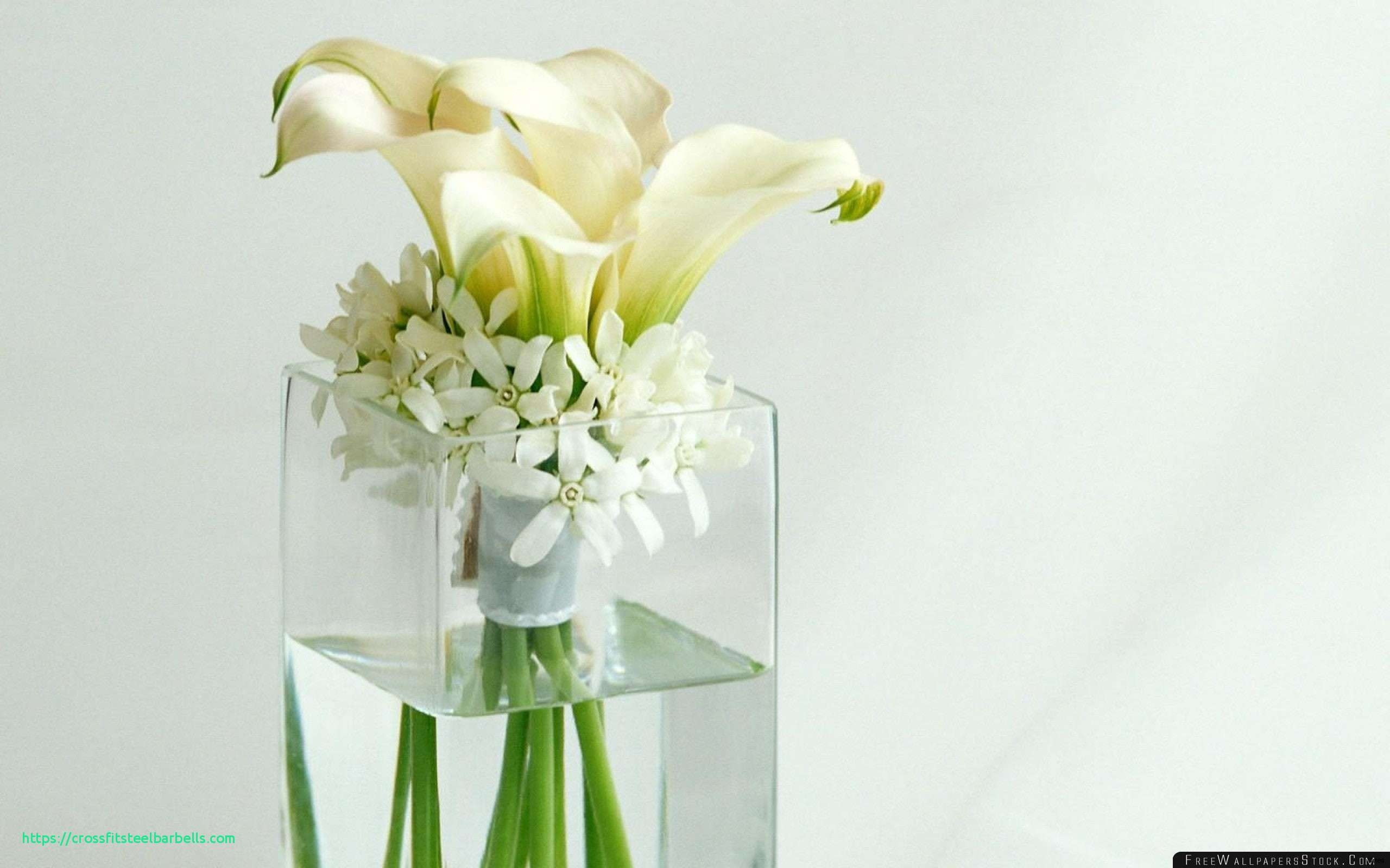 30 attractive wholesale Flowers and Vases